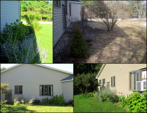 collage view of side yard area