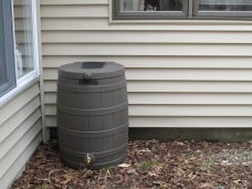 rain barrel in place (sans gutters)