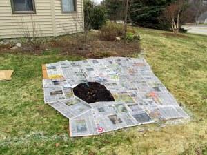 C - newspaper on the cardboard