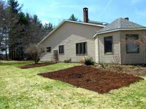 Sheet-mulched bed for perennials on either side of what will be the veggie bed.