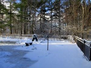 snow in back yard, 16 April 2014