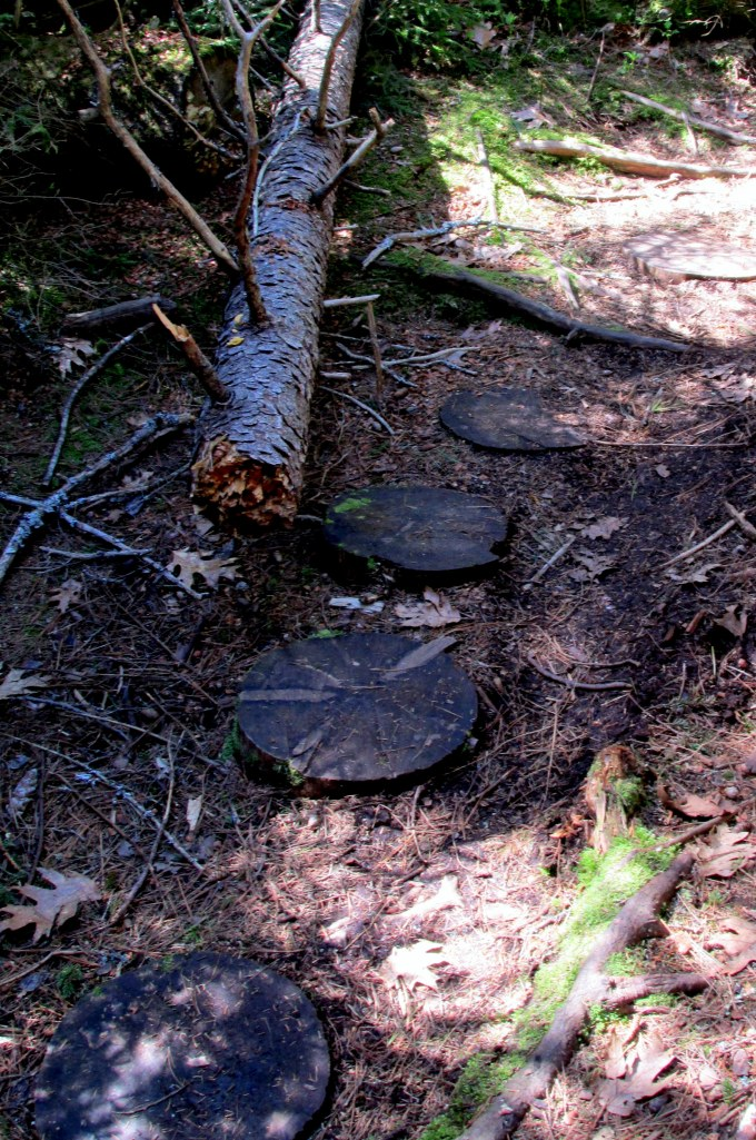 "stepping ""stones"" made of tree trunks"