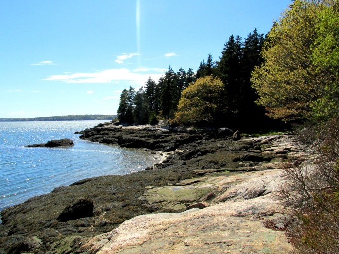 Sheepscot River cove and rocks