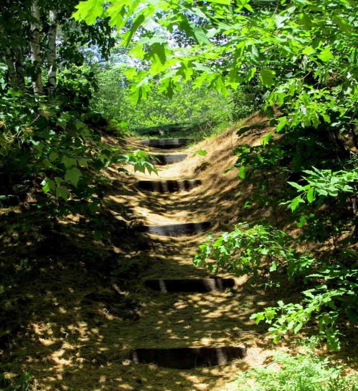 side trail steps