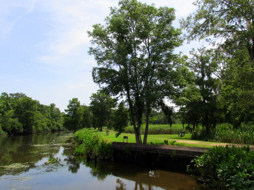 Waccamaw River from the 'Beyond the Gardens' trail