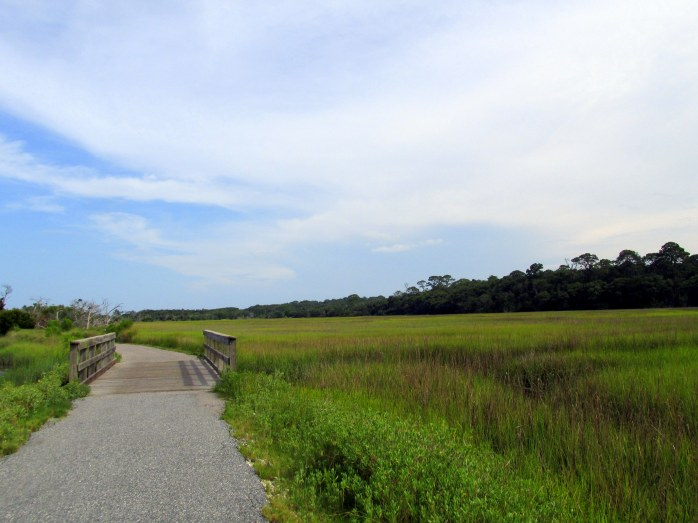 bike path and bridge, Clam Creek marsh, June 2014