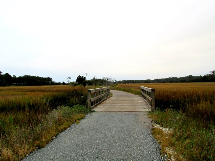 bike trail and bridge, Clam Creek marsh, Christmas Day 2013