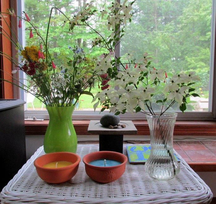 cut garden flowers and dogwood shrub stem, July 2013