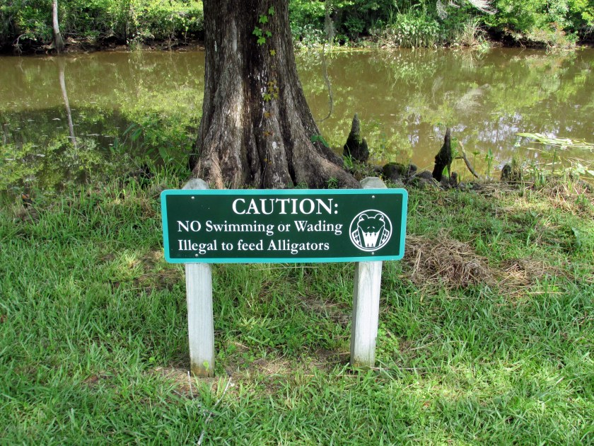 sign: don't feed alligators