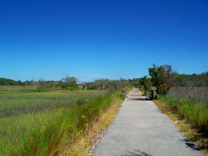 bike path, Clam Creek marsh, April 2012