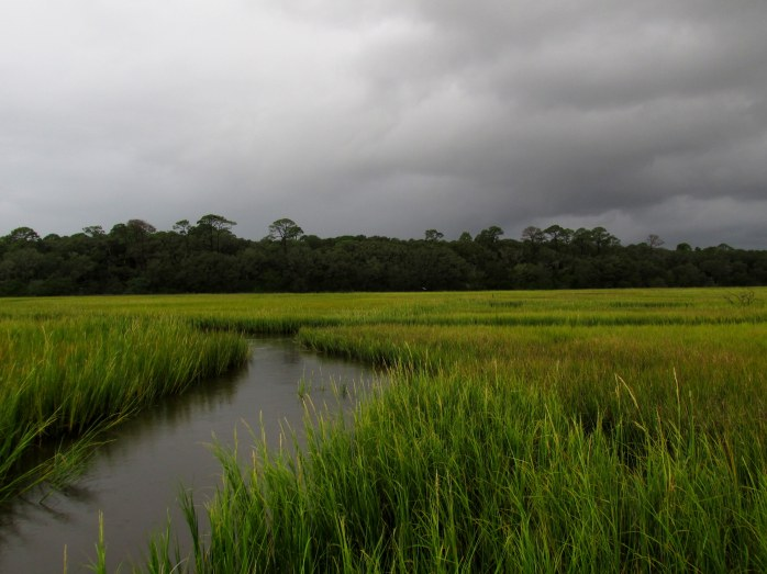 stormy sky over Clam Creek marsh, Sept. 2013