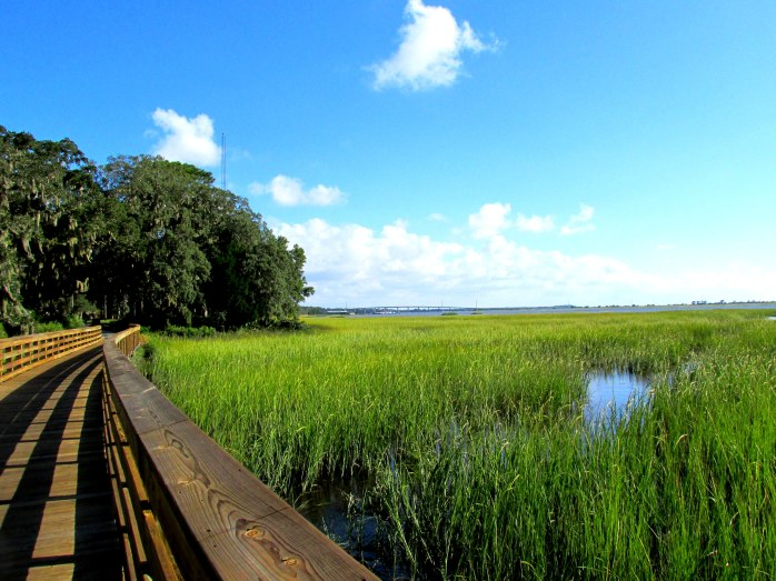 marsh view from bike path bridge near historic area, Sept 2013