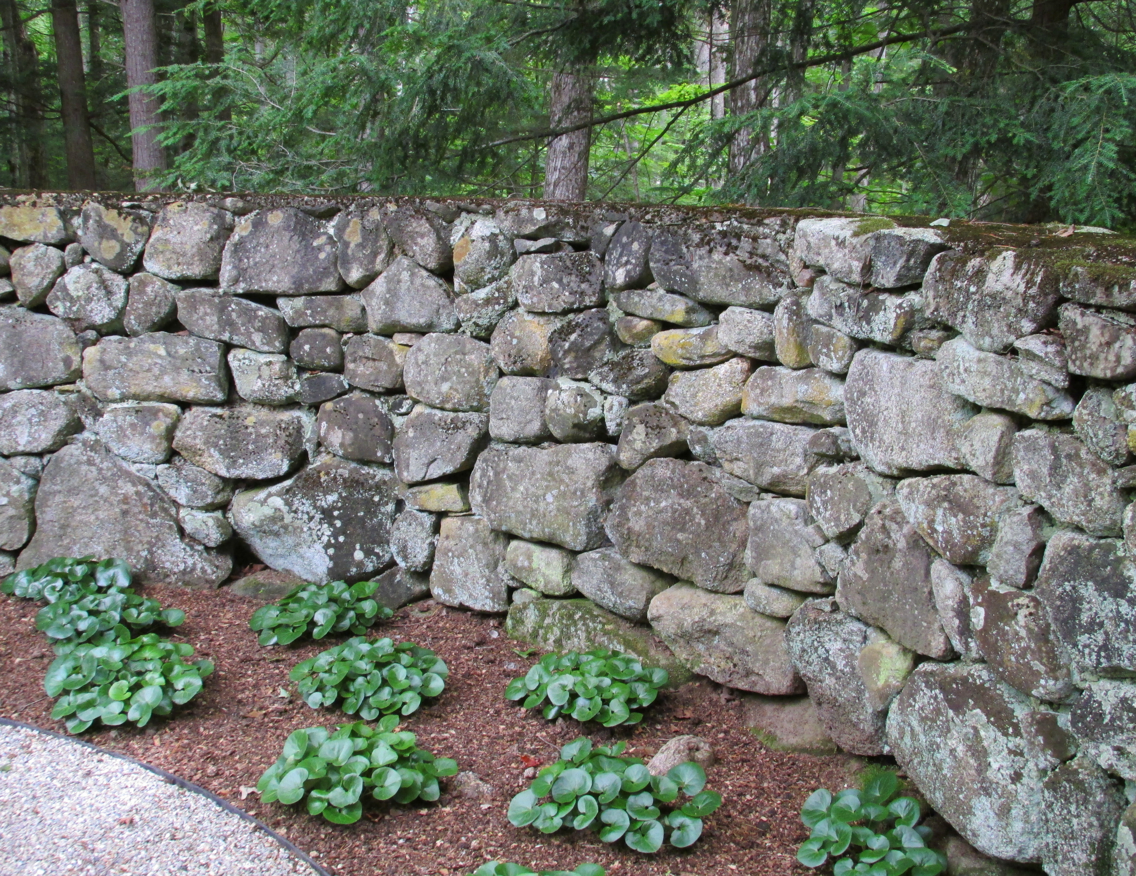 The slowest of the performing arts a moveable garden for Rock wall garden