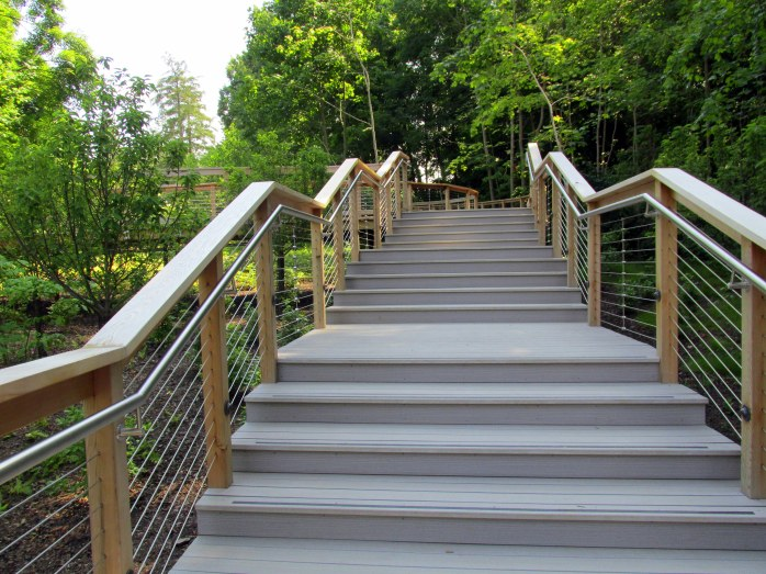 new boardwalk steps near meadow