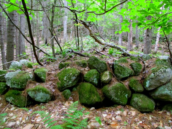 stone wall, 17 Aug 2014