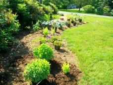 frontbedplantslinedupandreadyforplanting21June2011