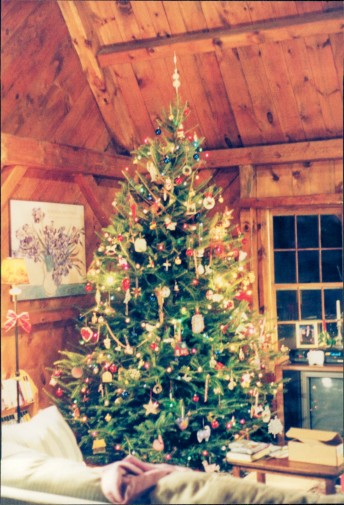 1994 tree