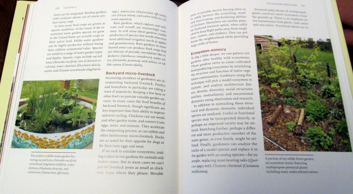 edible garden pages from New American Landscape