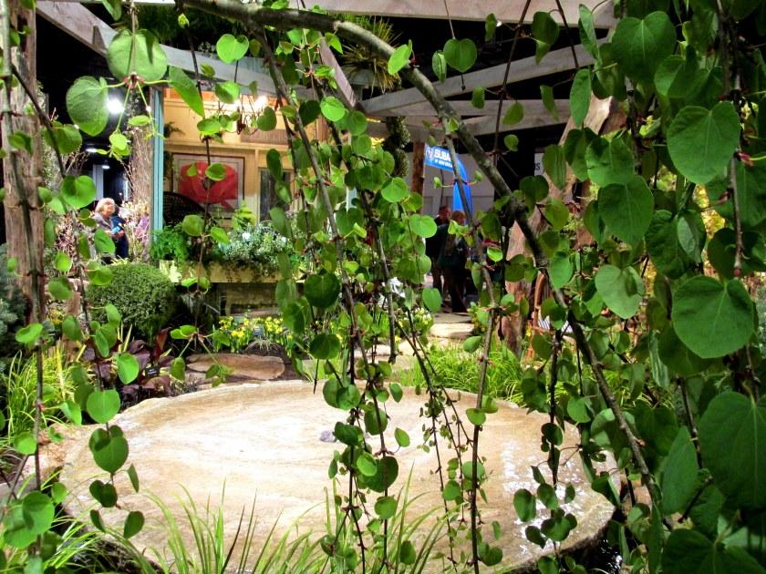Miskovsky Landscaping and Haskell Nursery display: garden through weeping Katsura tree