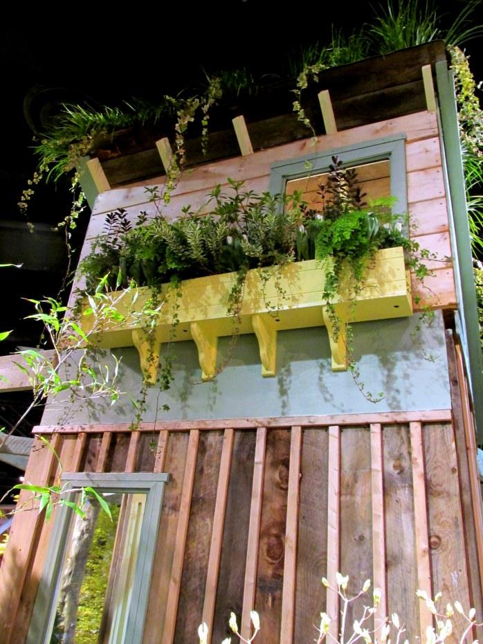 Rutland Nurseries display: windowbox