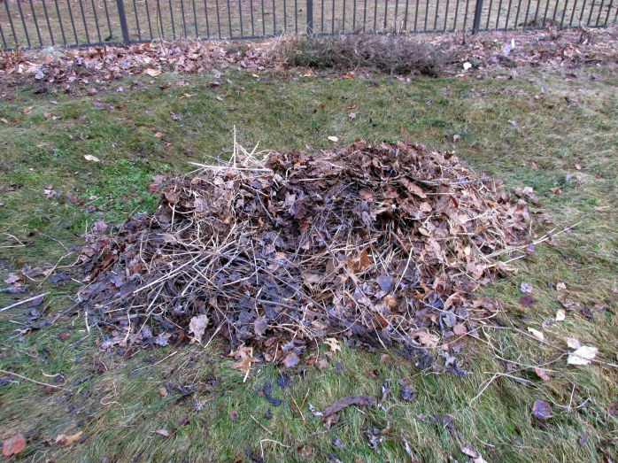 leafandgrassmulchpile18April2015