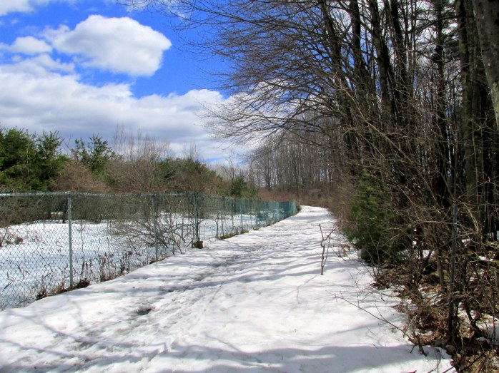 paved trail covered with snow