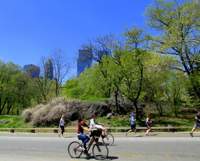 runningbikinginCentralParkNYC2May2015