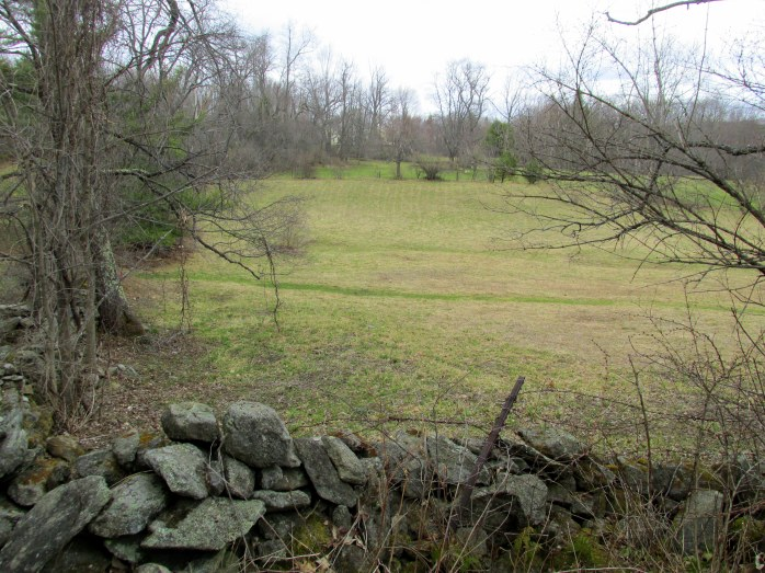 stone wall and adjoining (private) field