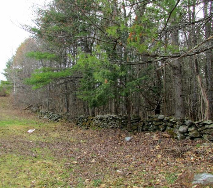 stone wall along the sheepway