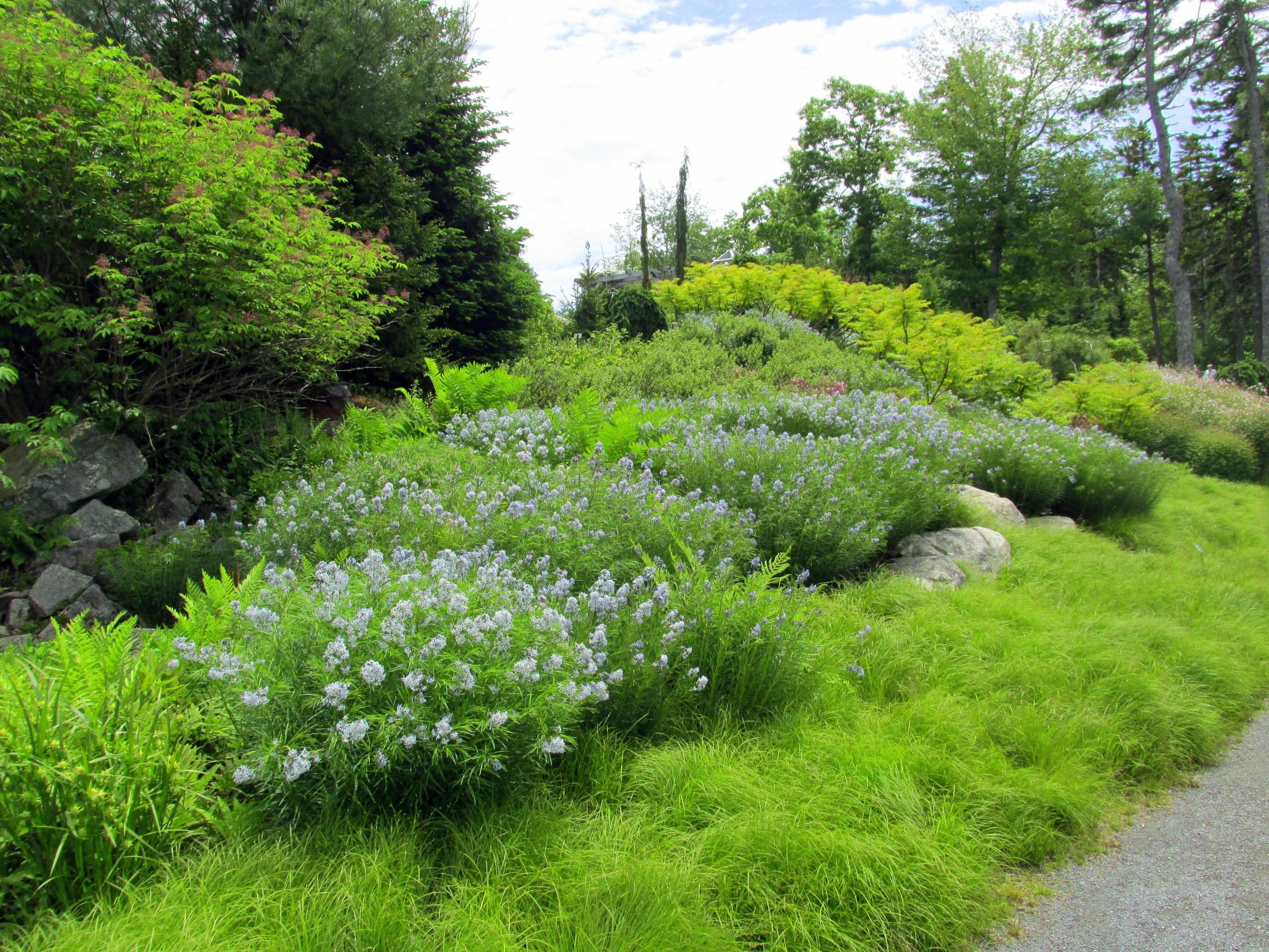 Space to Walk: Coastal Maine Botanical Gardens – A Moveable Garden