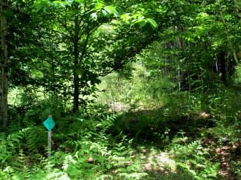 Huntington Hill Trail sign, 6 June 2015