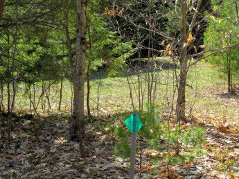 Huntington Hill Trail sign, 6 May 2015