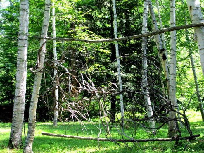 wood sculpture among birches in Dark Woods