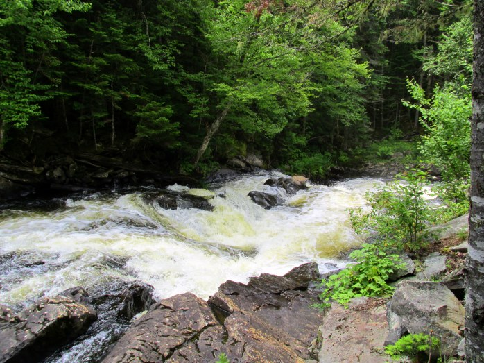 Connecticut River - Falls in the River trail