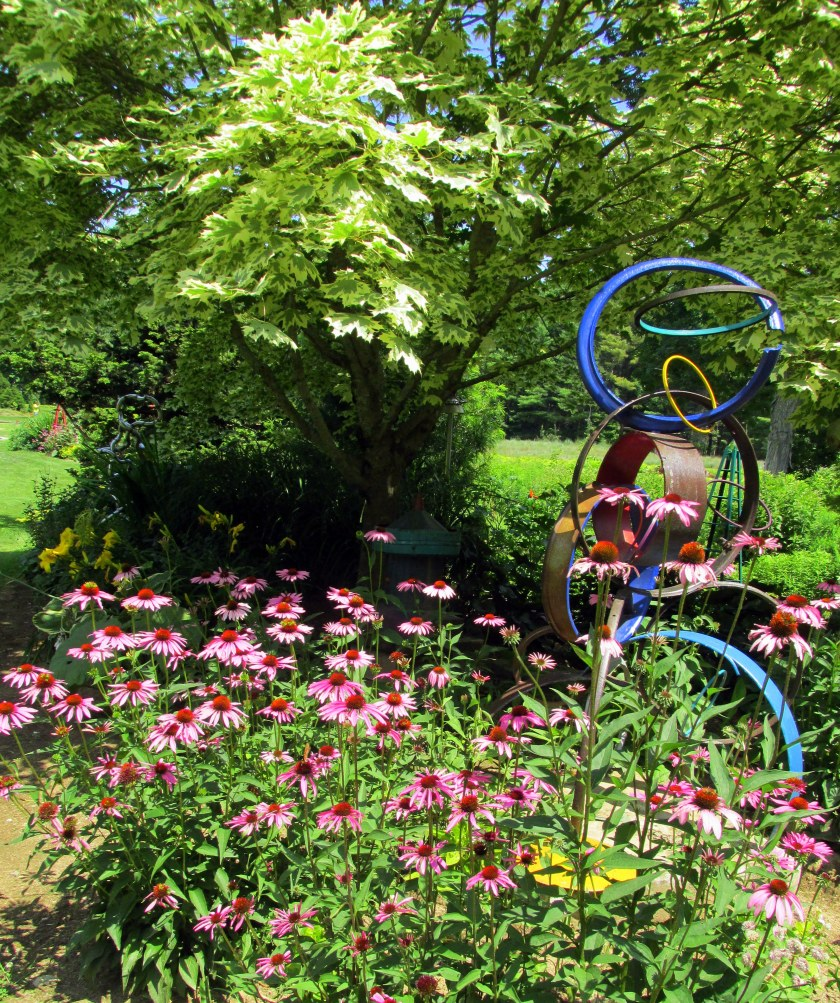 """Ring Toss"" sculpture and echinacea"
