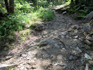 swaleMegallowayMtntrailPittsburgNH10July2015
