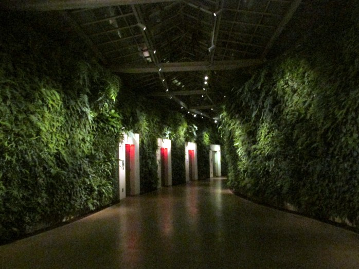 green wall and bathrooms in Conservatory at night