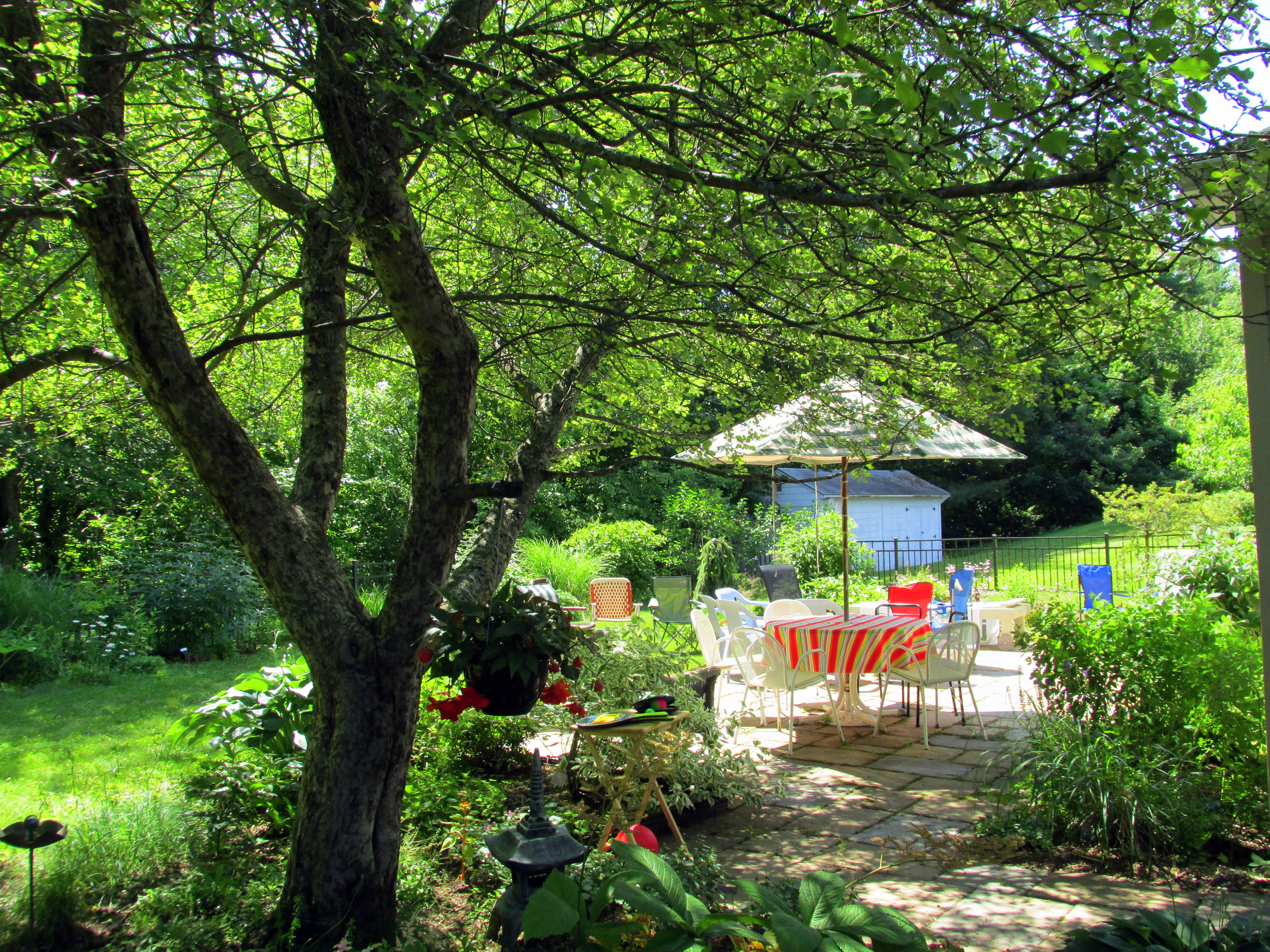 Backyard Permaculture Book : Permaculture design is a perspective, not a prescription