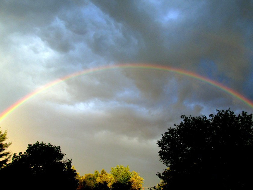 rainbow4Aug2015