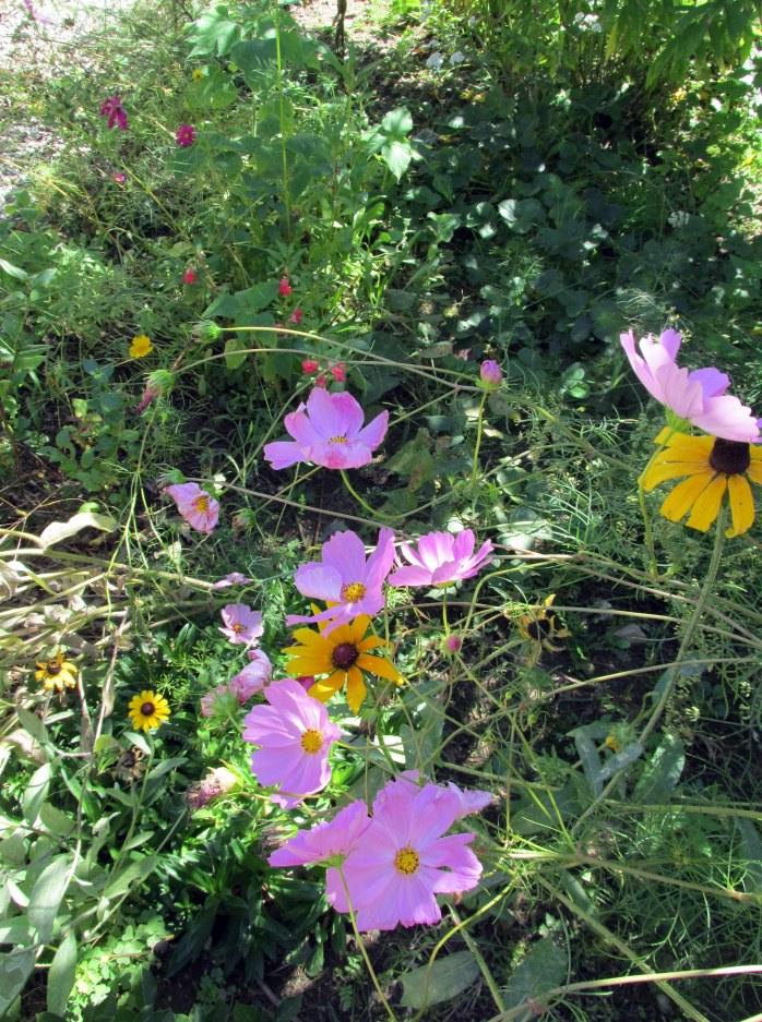 flowersinfruitguild15Sept2015