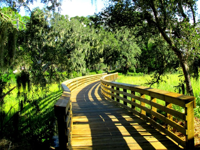 Jekyll Island (GA) bike path, Sept. 2013