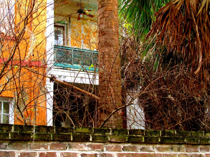 balcony, brick, bramble, Savannah, GA, Dec 2013