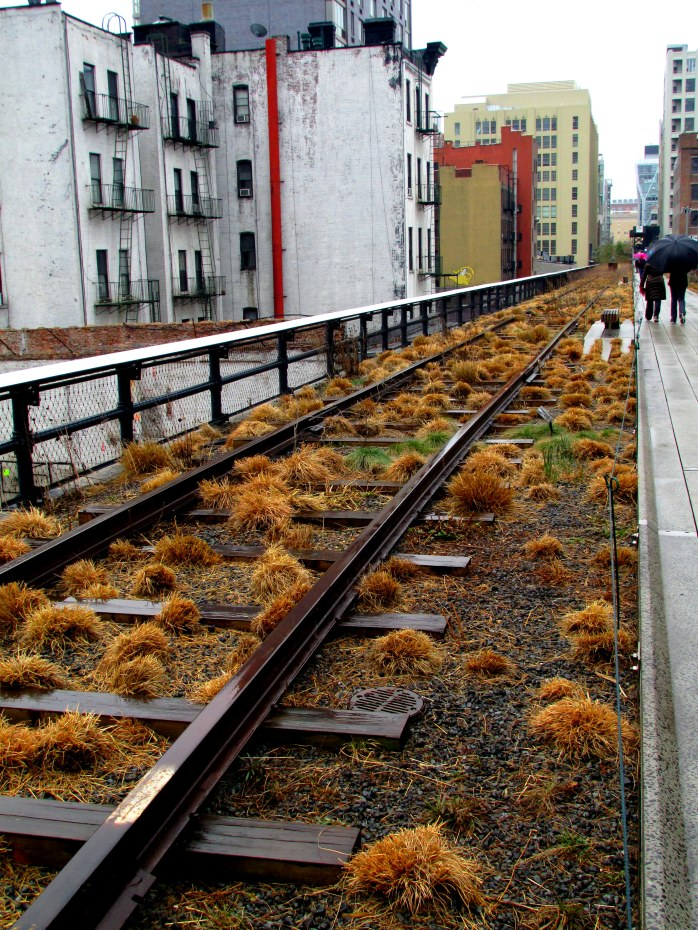 HighLinewithgrassesHighLineNYC29March2014
