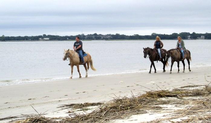 horsebackridingnorthbeachJI25Sept2014
