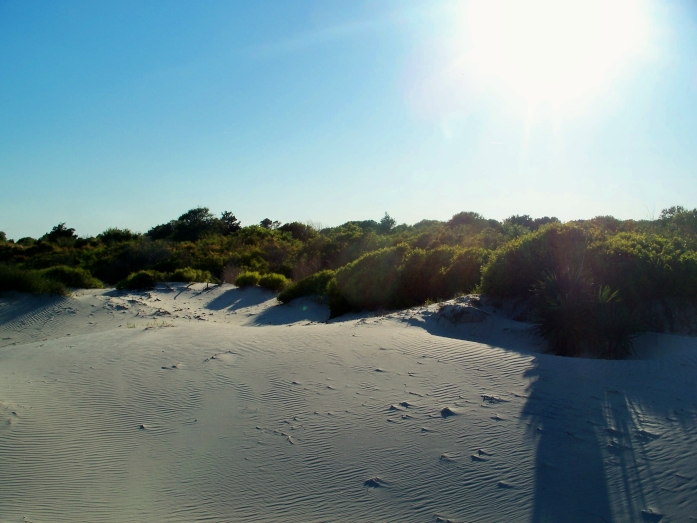 south dunes, Jekyll Island, evening, 25 April 2012