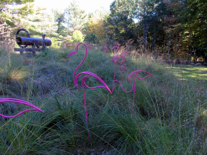 pink flamingos in grasses