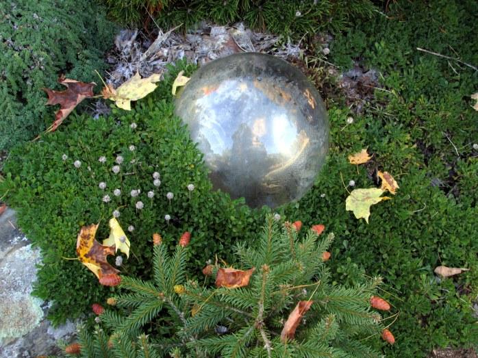 silver globe in moss, Rock Garden