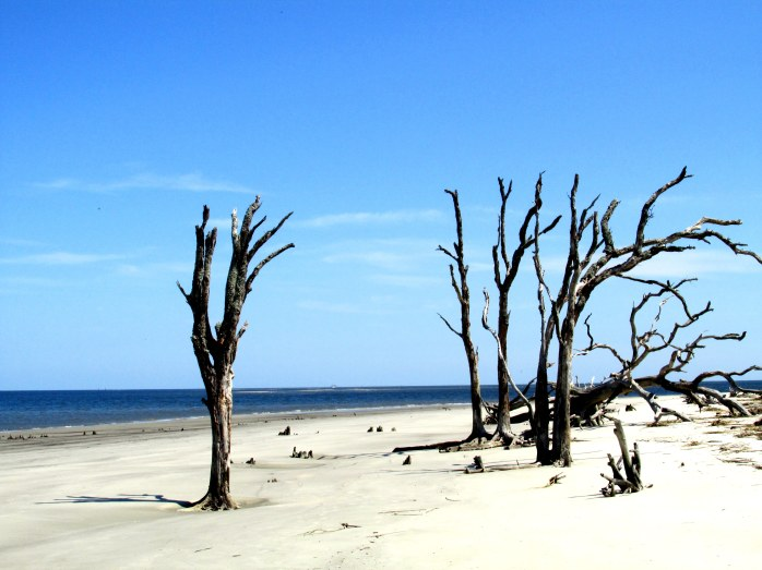 north beach, Jekyll Island, Sept 2014