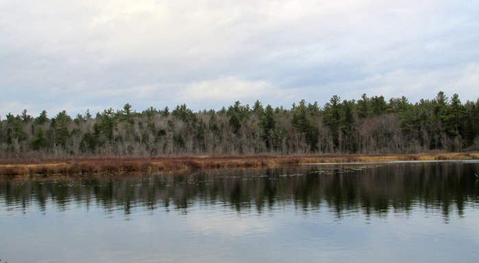 Clark Pond, NH - 6 Nov