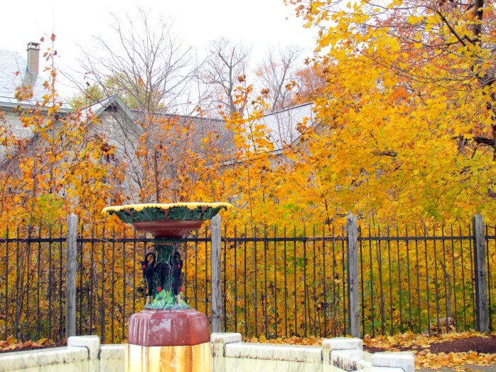 fountain, yellow foliage, St. Stephen's